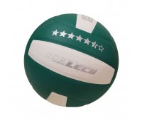 Т1510 Мяч волейбольный 5,5 звезд , 9 класс